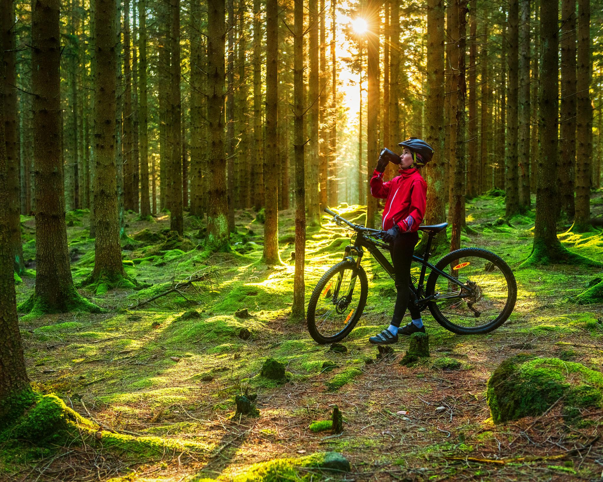 Kille som cyklar i skogen.