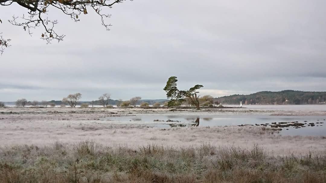 Nolhagavikens naturreservat.