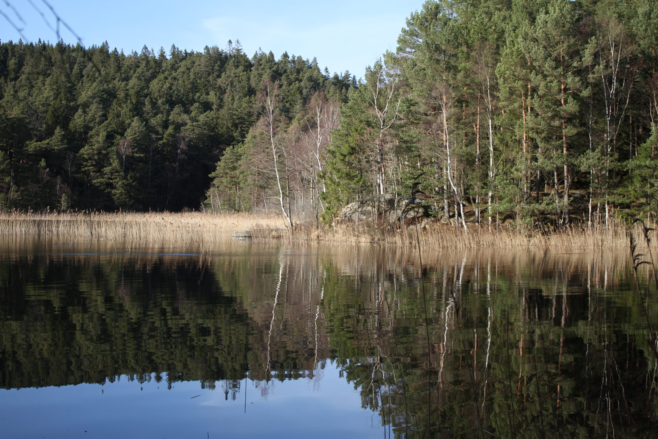 Bild på Kvarnsjön.